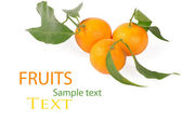 Tangerines with green leaves isolated on white — Stock Photo