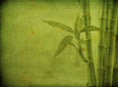 Grunge bamboo background — Stock Photo