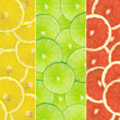 Abstract background of citrus slices — Stock Photo #37532389