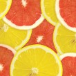 Abstract background of citrus slices. — Stock Photo #37533087