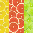 Abstract background of citrus slices — Stock Photo #37535033