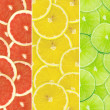 Abstract background of citrus slices — Stock Photo #37536097