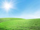Piękne lato krajobraz — Zdjęcie stockowe