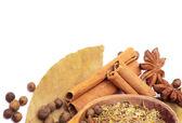 Spices border — Stock Photo