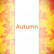 Autumn background. — Stock Photo #39009337