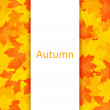 Autumn background. — Stock Photo #39009357