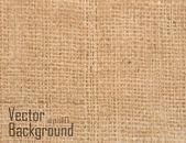 Vector canvas texture — Stock Vector