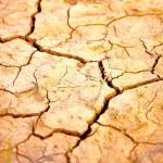 Dry ground — Stock Photo #38052421