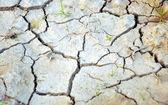 干燥的地面若い女性の肖像画 — 图库照片