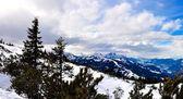 Alps panorama — Stock Photo