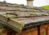 Shingle roof — Stock Photo