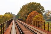 Comboio de mercadorias — Foto Stock