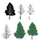 Vector trees — Stock Vector