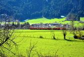 Alpen-Zug — Stockfoto