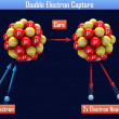 Double Electron Capture — Stock Photo #37905313