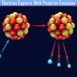 Stock Photo: Electron Capture With Positron Emission