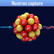 Stock Photo: Neutron capture