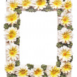 Stock Photo: Frame with flowers on white background with clipping path