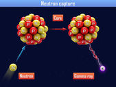 Neutron capture — Stock Photo