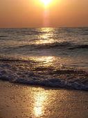 Sunny lane at sea — Stock Photo