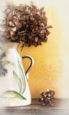Detail of vase with dried hydrangeas — Stock Photo