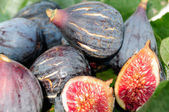 Figs on fig leaf — Stock Photo