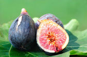Three Figs on fig leaf — Stock Photo