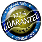 100 guarantee icon — Stock Photo