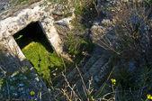 Acquarica di Lecce - Giornata del Paesaggio — Photo
