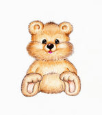 Cute teddy bear — Stock Photo