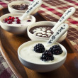 Closeup cream dessert with chocolate and berries in white porcel — Stock Photo