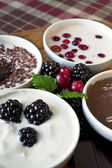 Close-up cream dessert with berries in white porcelain bowls on — Stockfoto