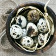 Quail eggs in wooden bowl on sack background — Stock Photo