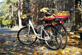 Two bicycles in autumn park with yellow tree leaves — Stock Photo