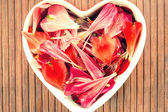 Spring floral petals love heart shape decor. Vintage filter. — Stock Photo