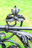 Iron floral ornament. Part of antique curved fence in Warsaw. — Stok fotoğraf
