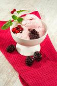 Pink colored cranberry fruit ice-cream. Indoors. Closeup. — Stock Photo