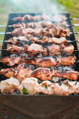 Cooking barbecue or shashlik on spit. Picnic on weekend. Outdoor — Stock fotografie