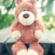 Lonely sad forgotten teddy bear toy. Awaiting for owner — Stock Photo #51761241