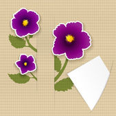 Greeting paper card with flower and ribbon for text second — Stock Photo