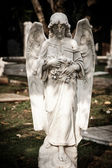 Statue of angel in old cemetery Museum Prasasti — 图库照片