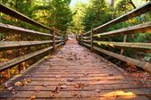 Boardwalk Trail — Stock Photo