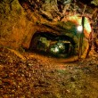 Stock Photo: Old Copper Mine