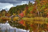 Wooden Bridge Reflections — Stock Photo