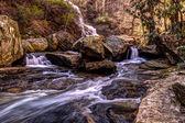 Smoky Mountain Stream — Stock Photo