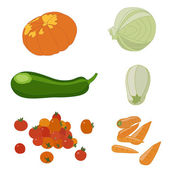 Vector set of isolated vegetables — Stock Vector