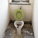 Old toilet — Stock Photo