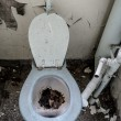 Stock Photo: Old toilet