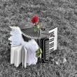 Accordion of Angels — Stock Photo