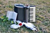 Fisarmonica degli angeli — Foto Stock